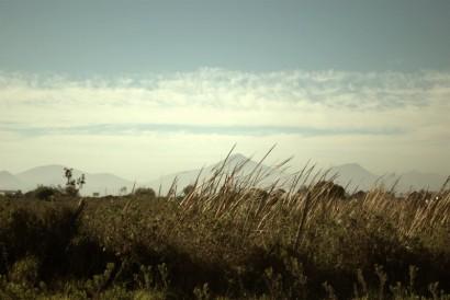 todavía hay espacios verdes donde todavía se pueden apreciar las montañas