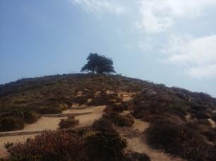 subiendo al cerro La Cruz