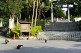 Entrada del templo Gokoku, Parque Onoyama.